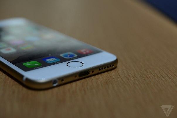 Фото iPhone 6 вид снизу